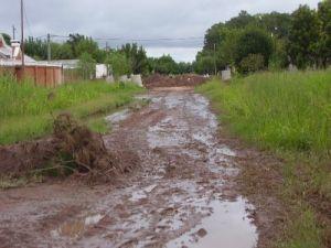 Las precipitaciones inundaron san bernardo for Viveros en maipu