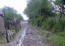 La situaci�n del Pasaje Algarrobo en Barranqueras afecta a la gente de la zona.